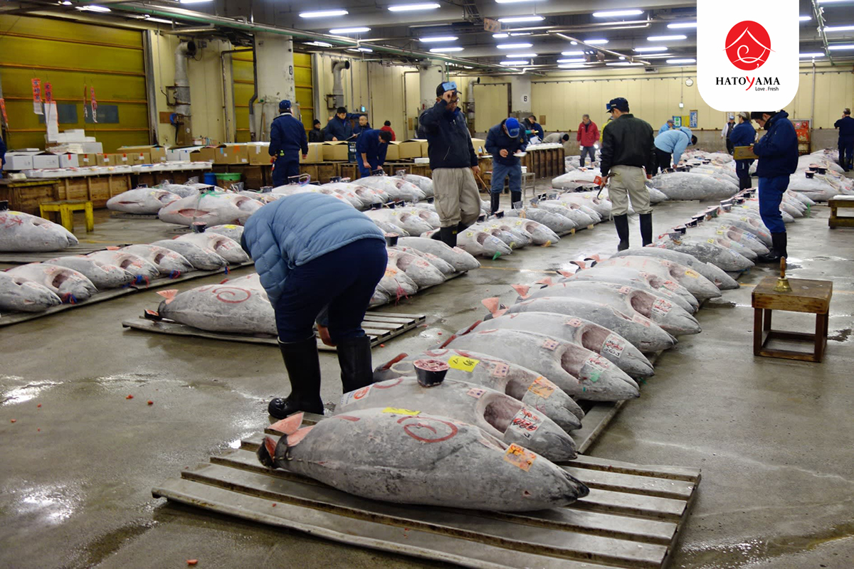 https _s3-ap-northeast-1.amazonaws.com_psh-ex-ftnikkei-3937bb4_images_0_8_5_5_2095580-7-eng-GB_0223N-tuna