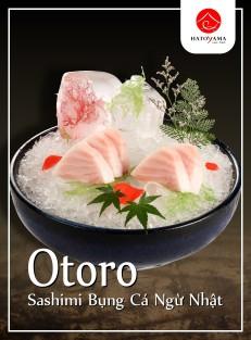 Otoro-462x626