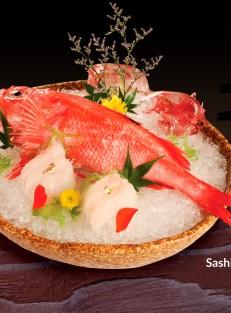 Sashimi-ca-Kinki-12-8-1200