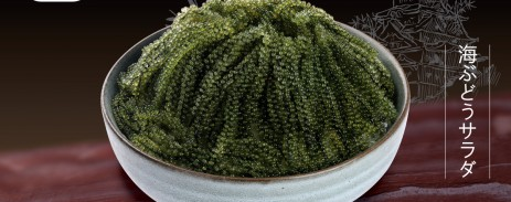 salad-rong-nho-12-8-1200