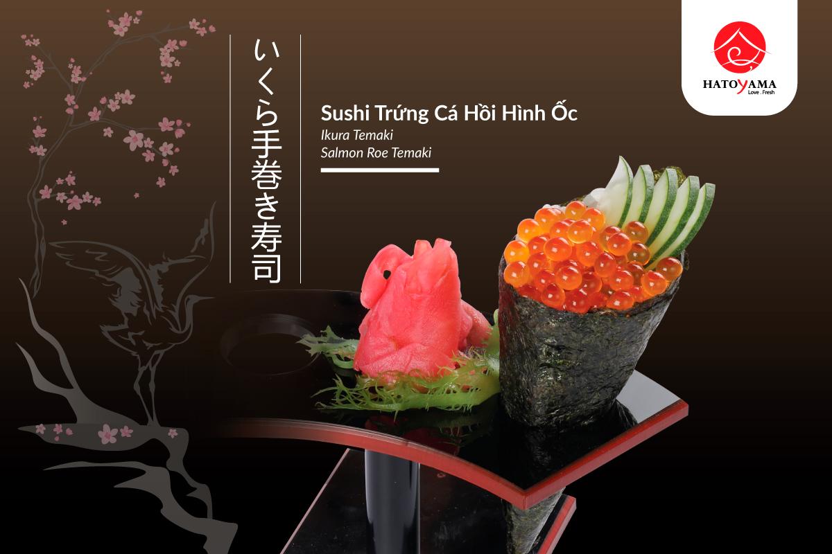 sushi-trung-ca-hoi-hinh-oc-12-8-1200